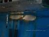 CV Maju Nov2009 112